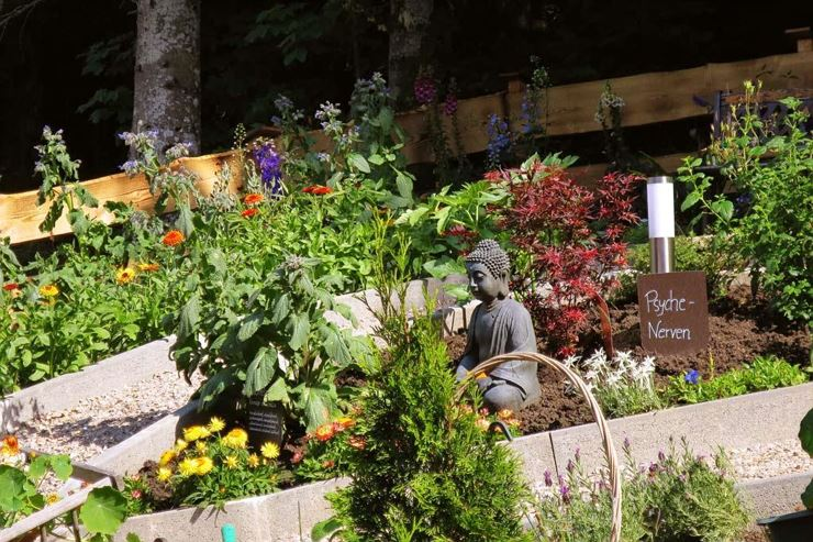 Herb walk and visit a herb garden - Thiersee
