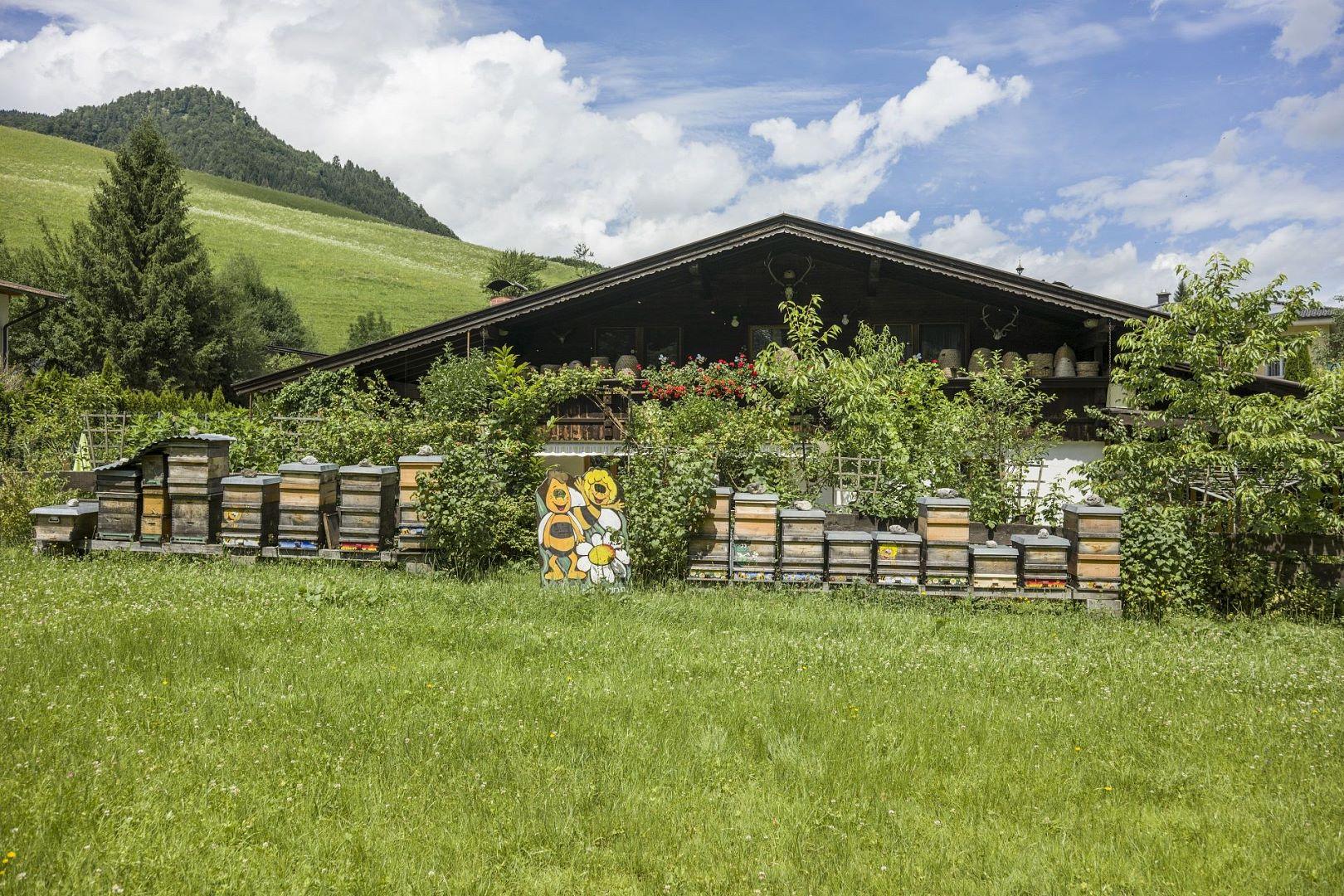 Kruterwelt Thierseetal Kufsteinerland in Tirol (sterreich)